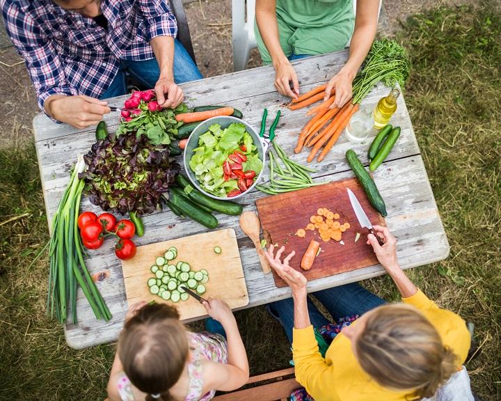 Respectar els gustos dels nens o imposar els nostres? - Veritas
