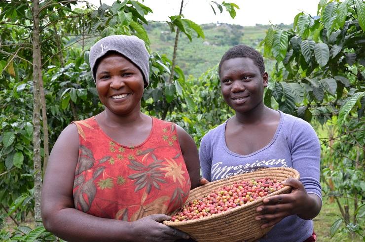 Veritas y Oxfam Intermón: una alianza única en el mercado - Veritas