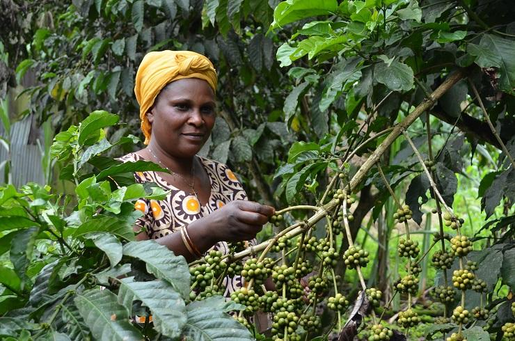 Veritas i Oxfam Intermón: una aliança única al mercat - Veritas