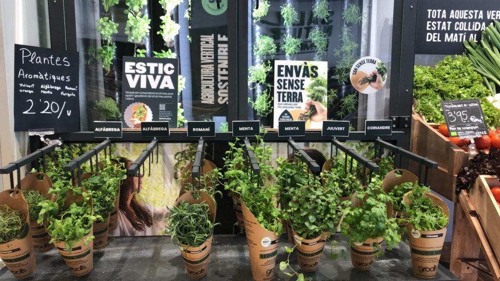 Hort vertical botiga Via Laietana - Detall - Veritas