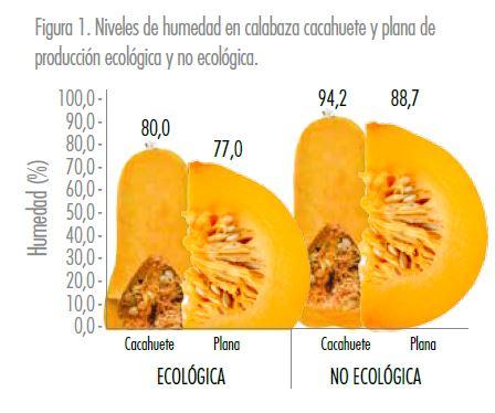 Carbassa ecològica - Estudis - Veritas