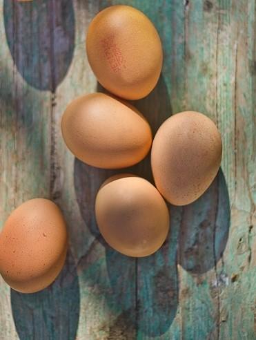 Código del huevo ecológico - Veritas