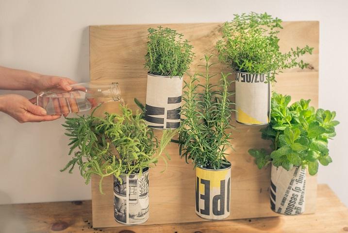 Jardinera d'herbes aromàtiques - Veritas
