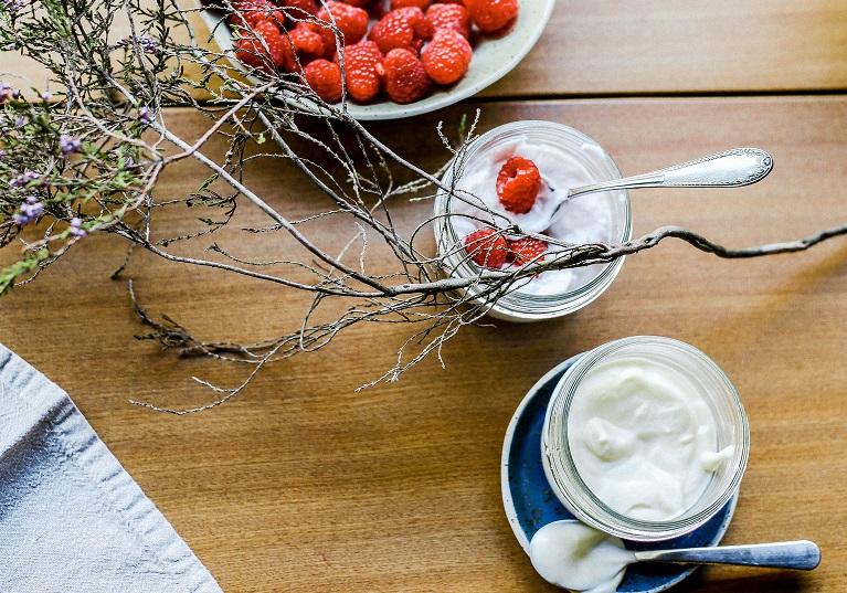 Delicias veganas que enriquecen tu dieta - Veritas