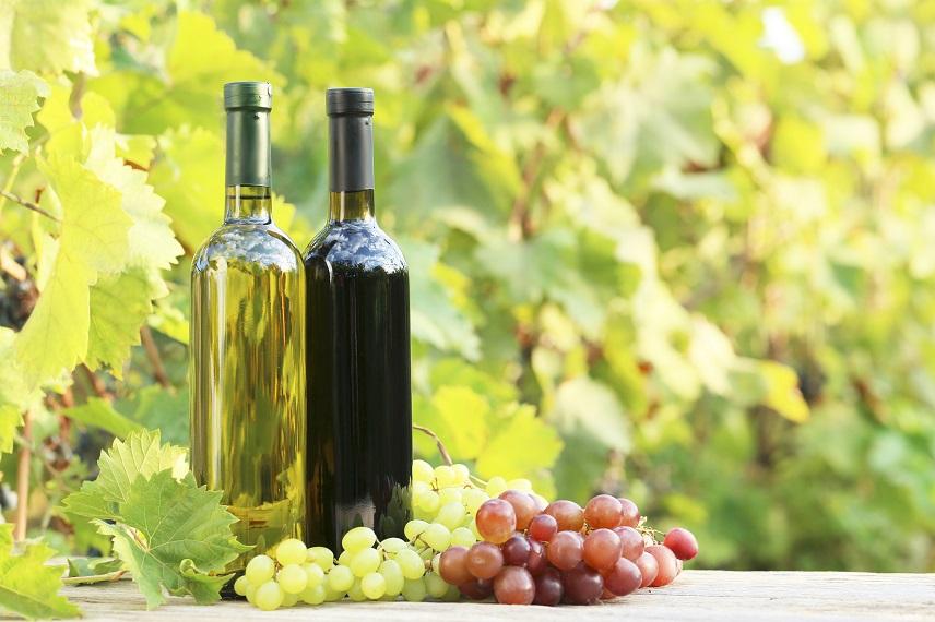 El vi ecològic és més antioxidant que el no ecològic - Estudis - Veritas