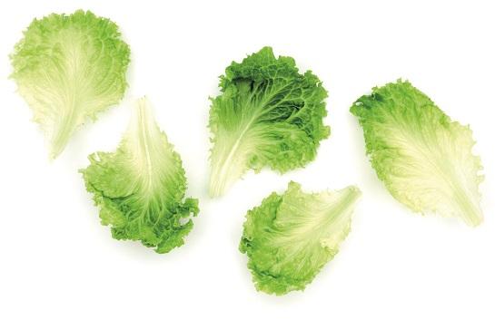 Els pesticides poden causar al·lergies alimentàries - Veritas